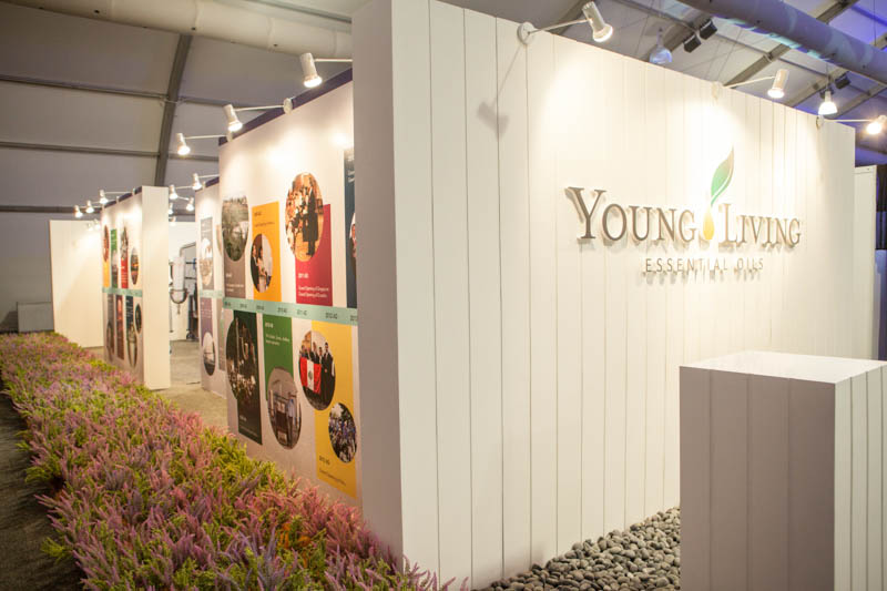 Young Living Launch